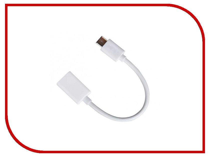 Аксессуар ROCK OTG Type-C to USB RCB0416 White