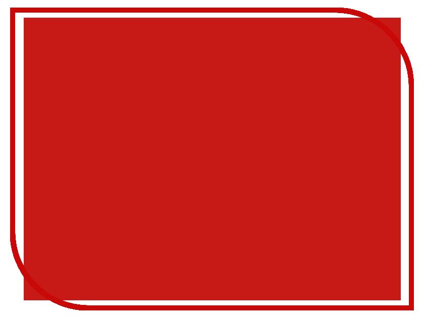Фон ПРОФЕССИОНАЛ 1.4x2.0m Red PF1201-1406