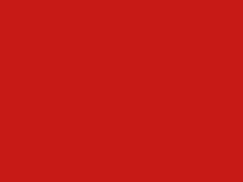 Фон ПРОФЕССИОНАЛ 1.4x2.0m Red PF1201-1406<br>
