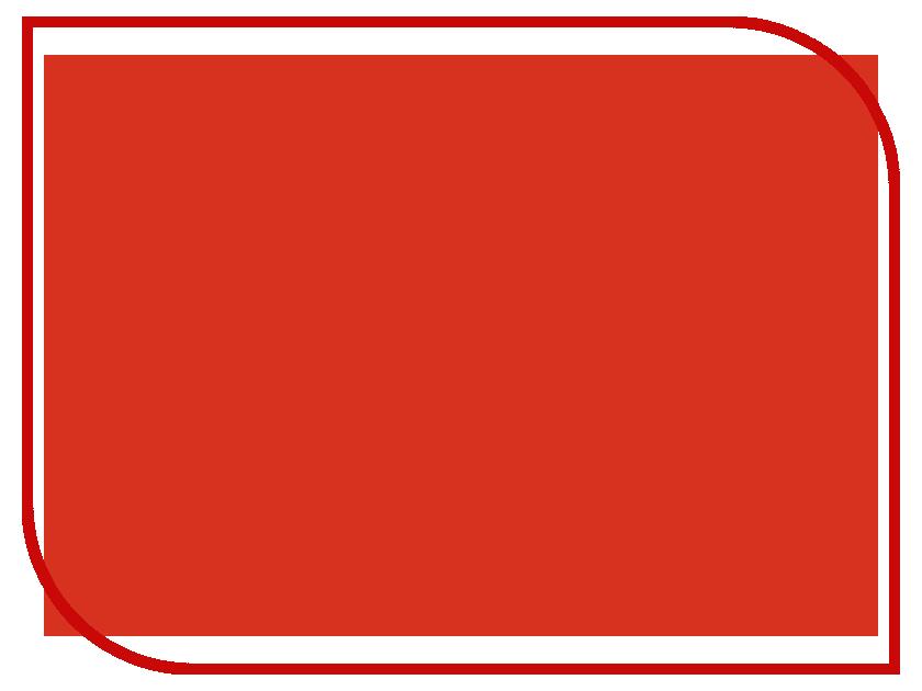 Фон ПРОФЕССИОНАЛ 1202-1005 1.0x1.4m Red PF1202-1005