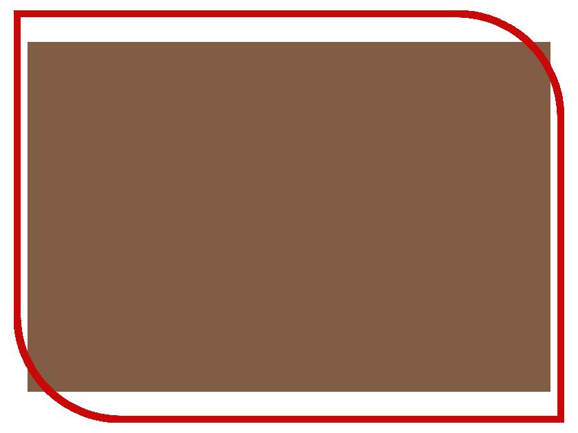 Фон ПРОФЕССИОНАЛ 1204-07 3.0x6.0m Brown PF1204-07<br>