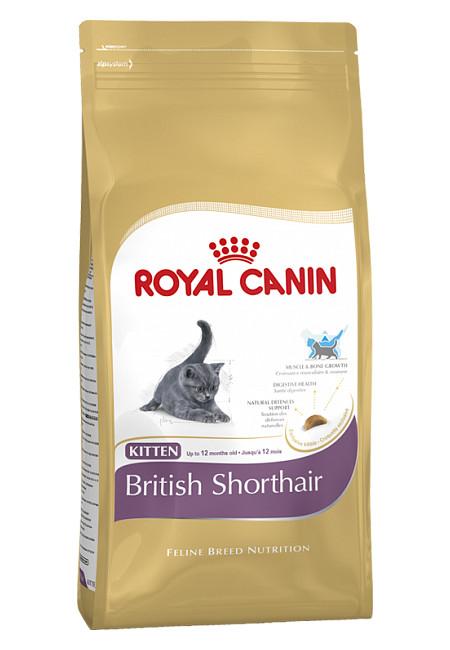Корм royal canin 34 kitten