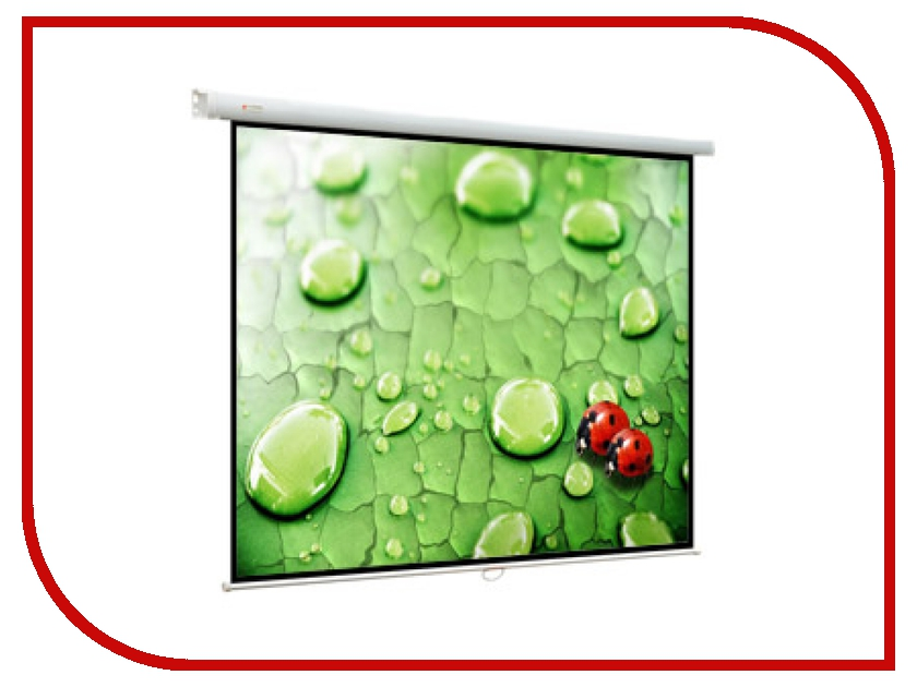 Экран Viewscreen Lotus WLO-4303