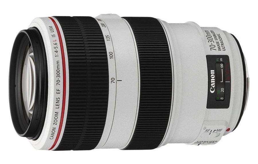 Фото - Объектив Canon EF 70-300 mm F/4-5.6 L IS USM объектив sony sel70300g 70 300 mm f 4 5 5 6 g oss for nex