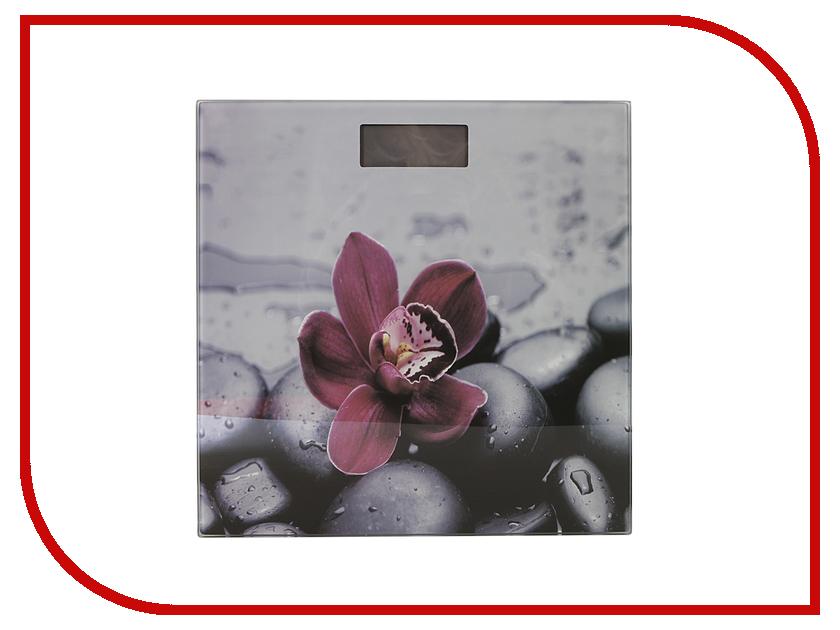 Весы напольные Redmond RS-733 Орхидея redmond rs 710 silver