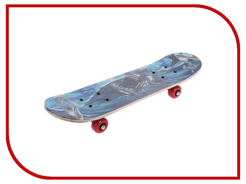 Скейт СИМА-ЛЕНД Акула 134266