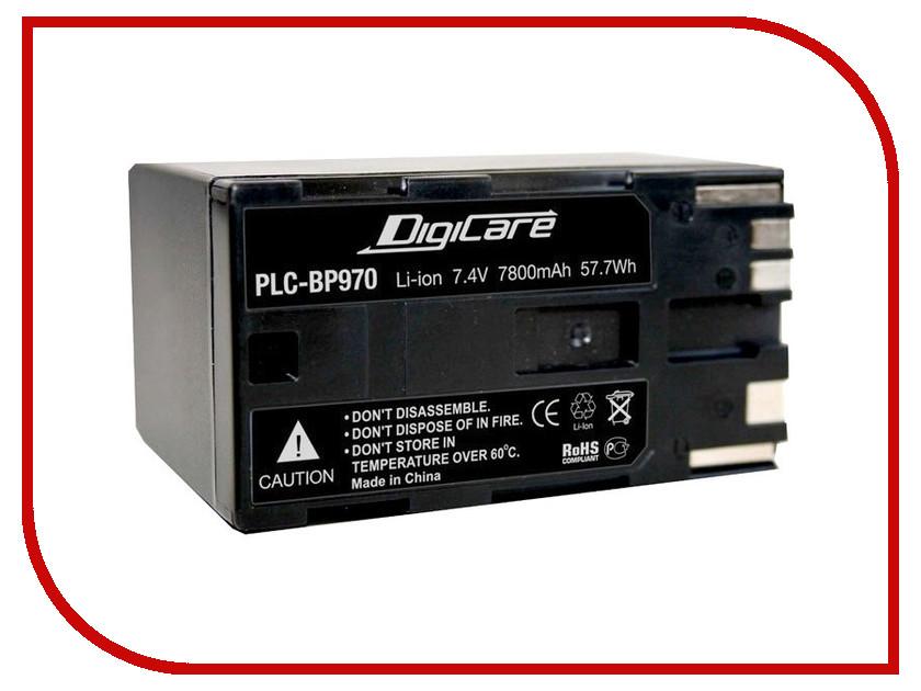 Аккумулятор DigiCare PLC-BP970