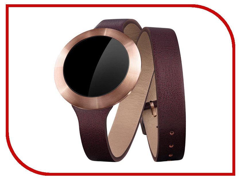 Zakazat.ru: Умные часы Huawei Honor B0 SS Coffee