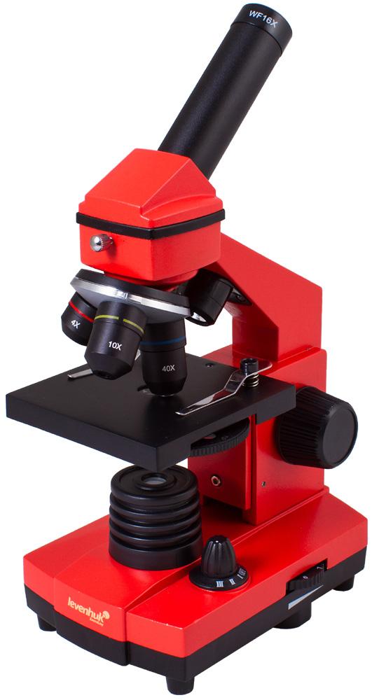 лучшая цена Микроскоп Levenhuk Rainbow 2L Plus Orange