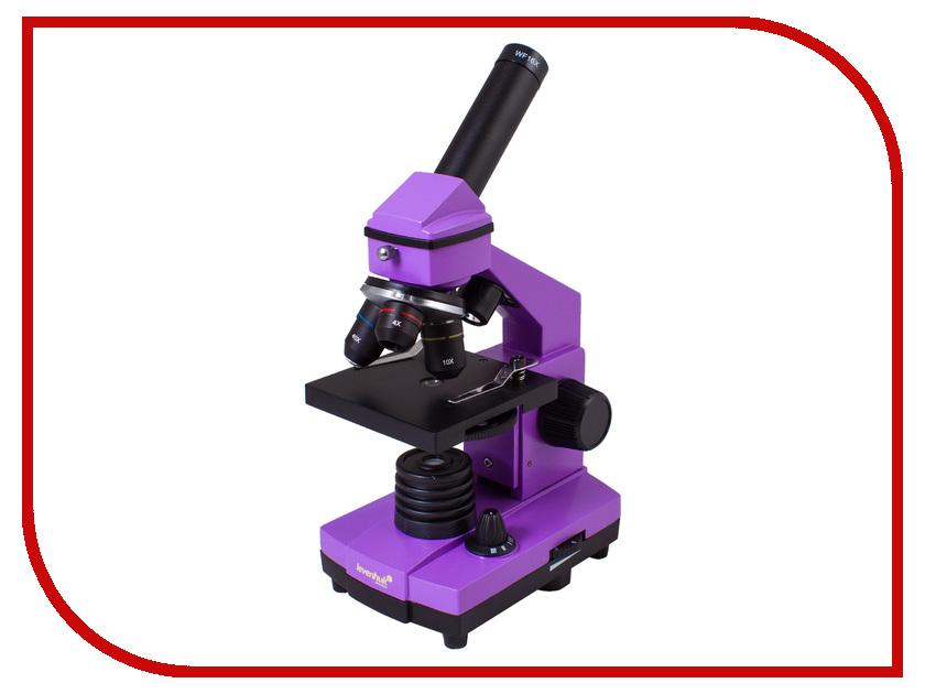 Микроскоп Levenhuk Rainbow 2L Plus Amethyst цифровой микроскоп levenhuk dtx 500 mobi 61023