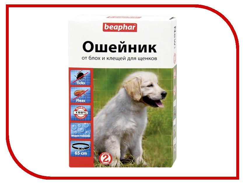 Ошейник Beaphar 65см 13207 для щенков