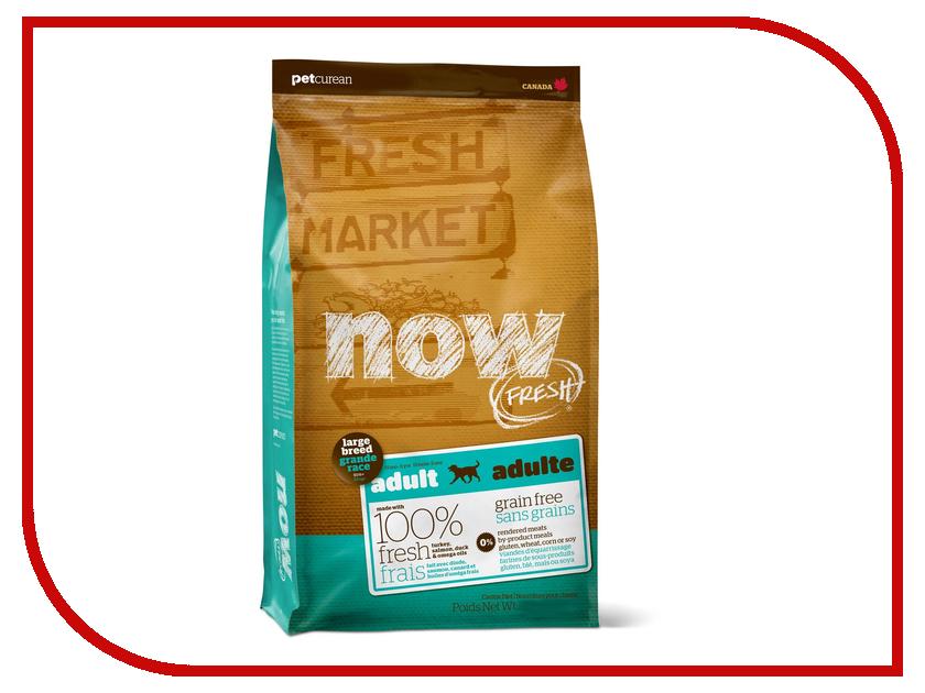 Корм Now Fresh беззерновой с Индейкой, уткой и овощами 11.35кг для собак крупных пород 03872<br>