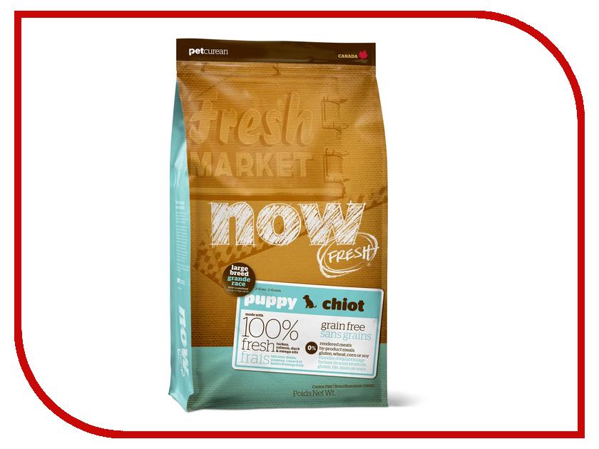 Корм Now Fresh беззерновой с Индейкой, уткой и овощами 2.72кг для щенков крупных пород 03810 fresh brand fr040emjqn68