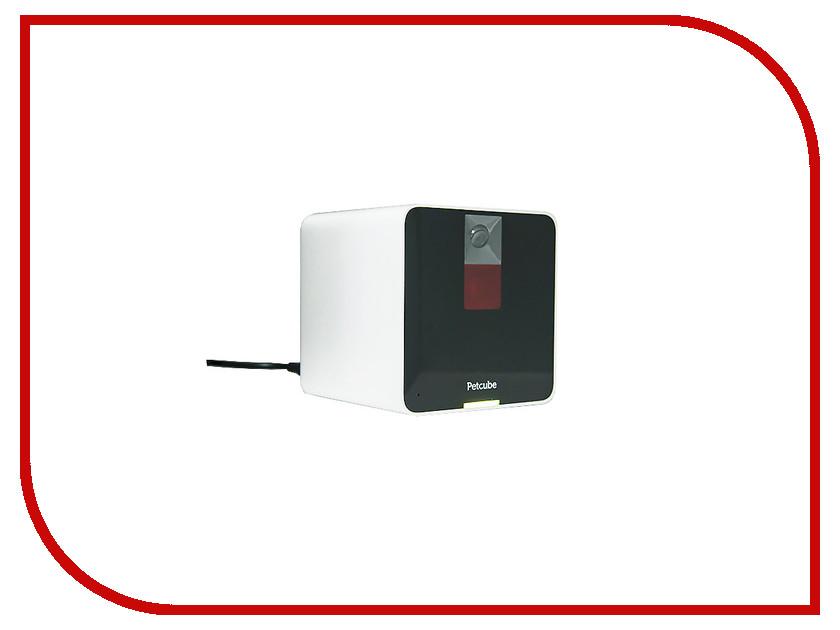 IP камера Petcube P161WB5M<br>
