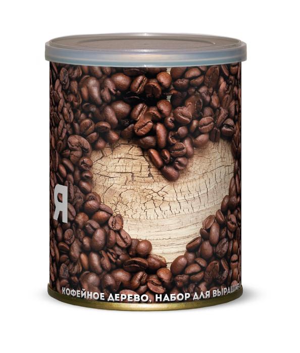 Растение BontiLand Я люблю кофе 415072