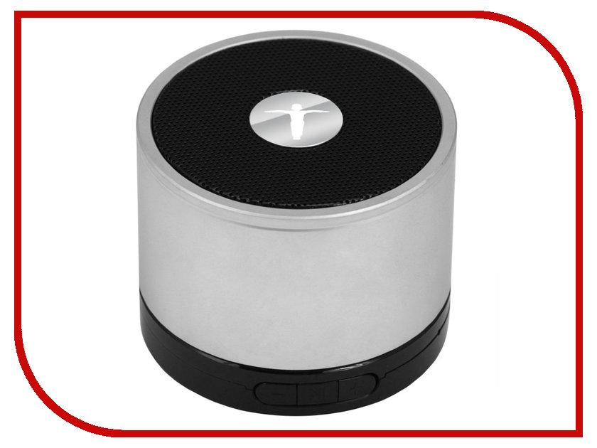 Колонка AbramTek M5BTC Silver<br>