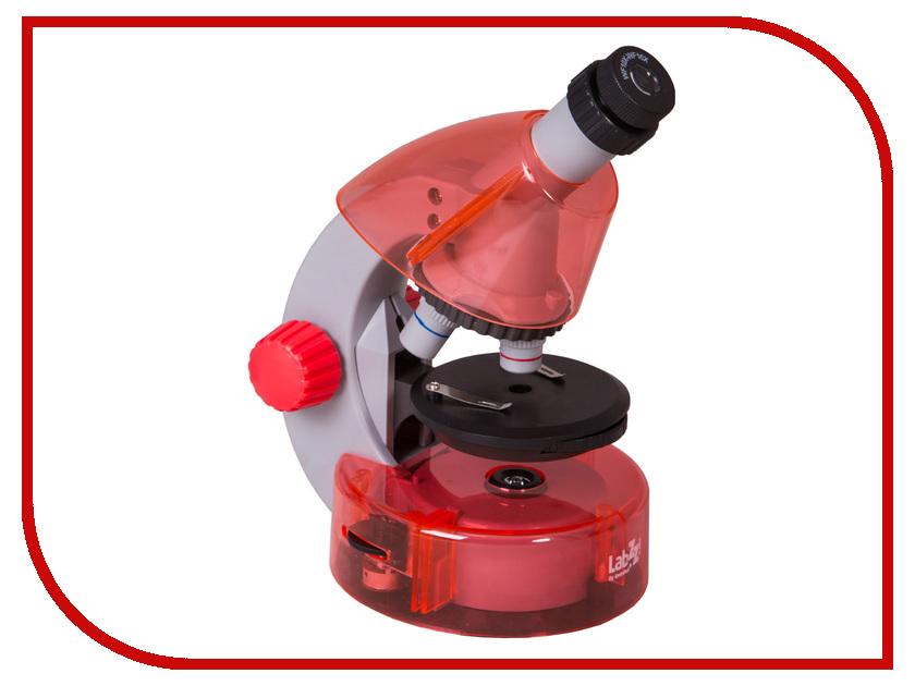 Микроскоп Levenhuk LabZZ M101 Orange 69730 наборы для творчества levenhuk микроскоп labzz m2