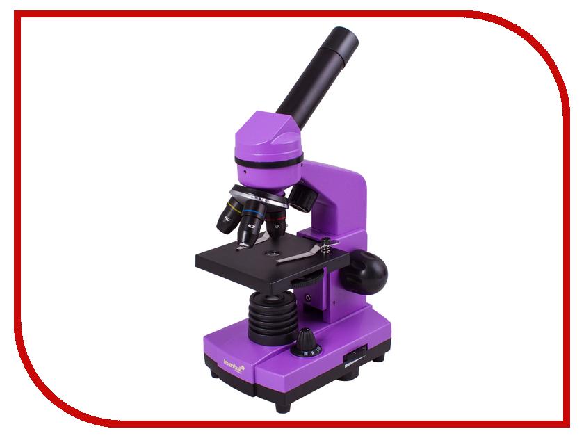 Микроскоп Levenhuk Rainbow 2L Amethyst цена