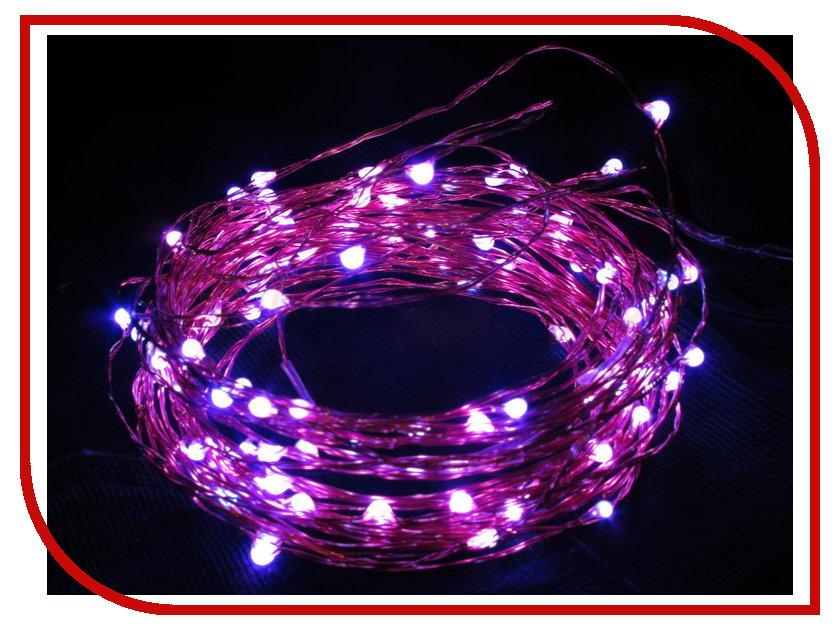 Гирлянда SnowHouse Violet LDM100-V-C