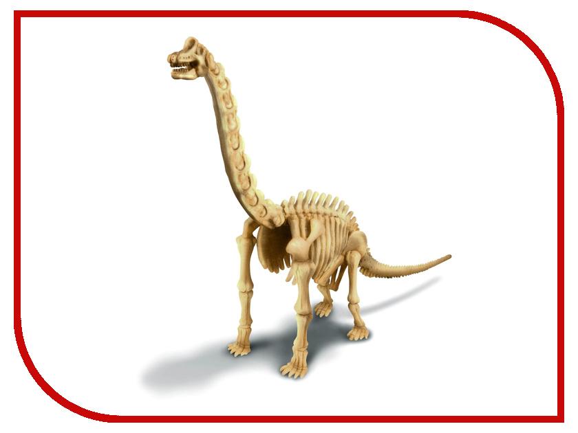 Игрушка 4M Скелет Брахиозавра 00-03237