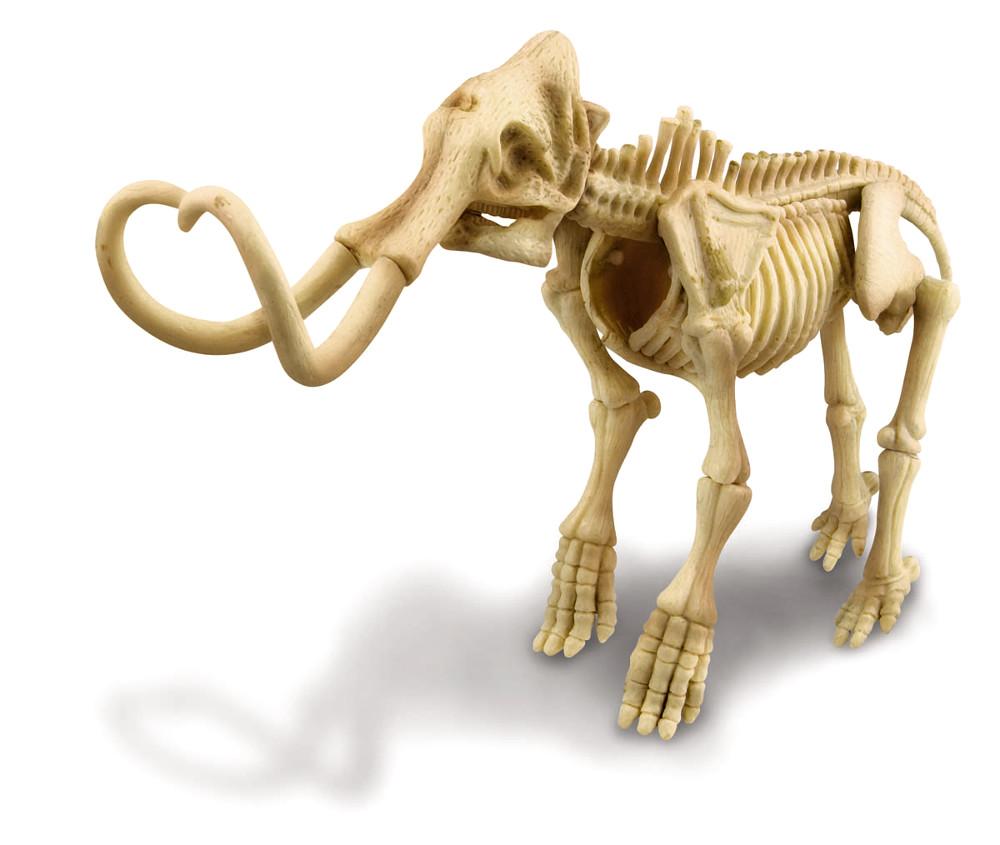 Игра 4M Скелет Мамонта 00-03236