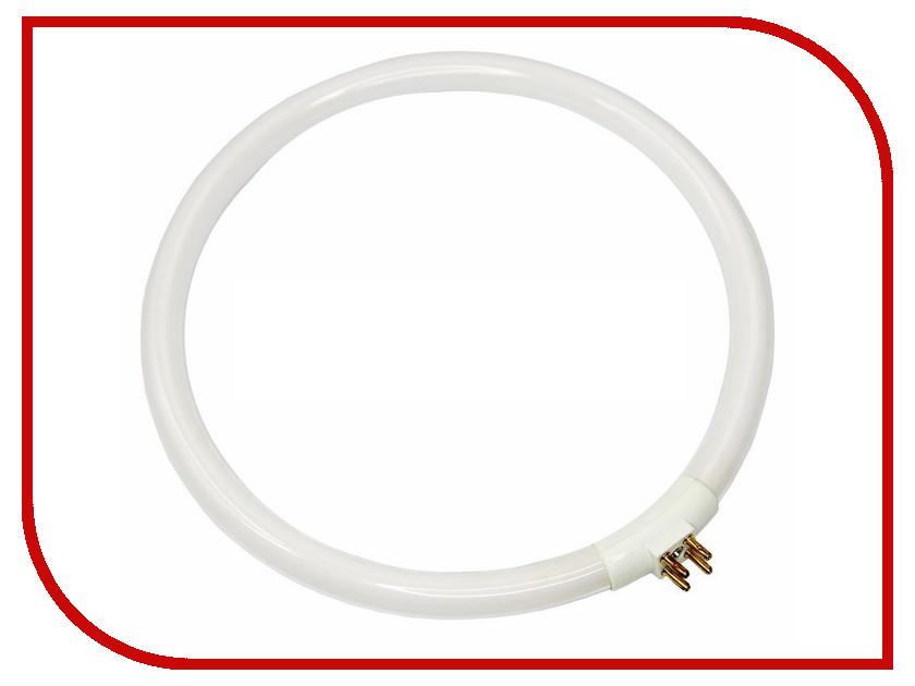 Лампа Rexant 6025 31-0803 цена и фото