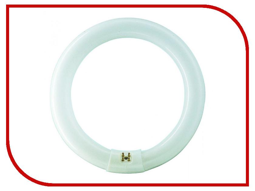 Лампа Rexant 31-0001/31-0801 цена и фото