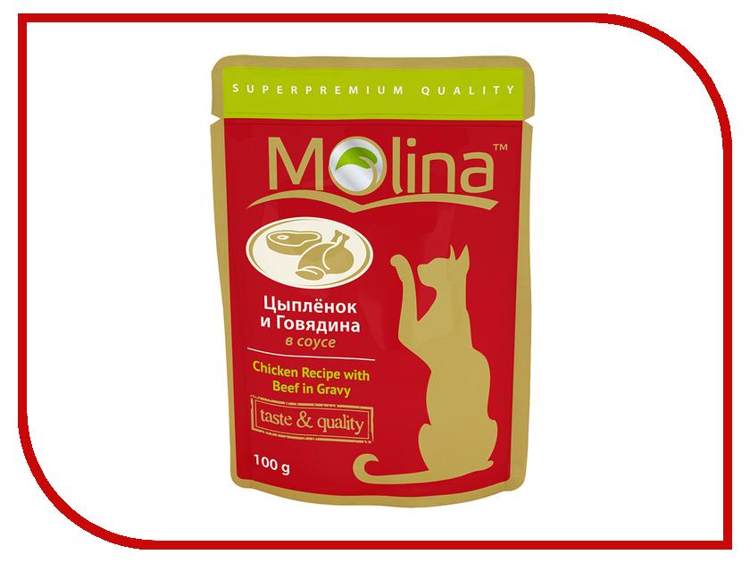 Корм Molina Цыпленок и говядина в соусе 100g для кошек 1112<br>