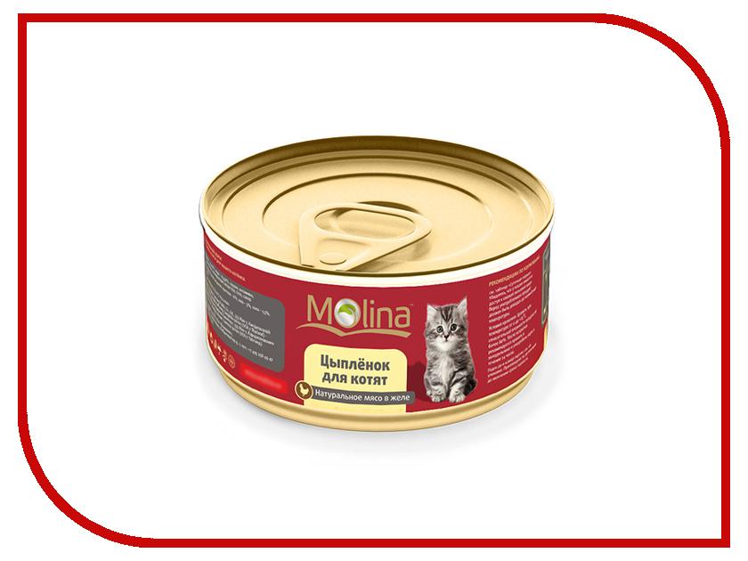 Корм Molina Цыпленок в желе 80g для котят 0900<br>