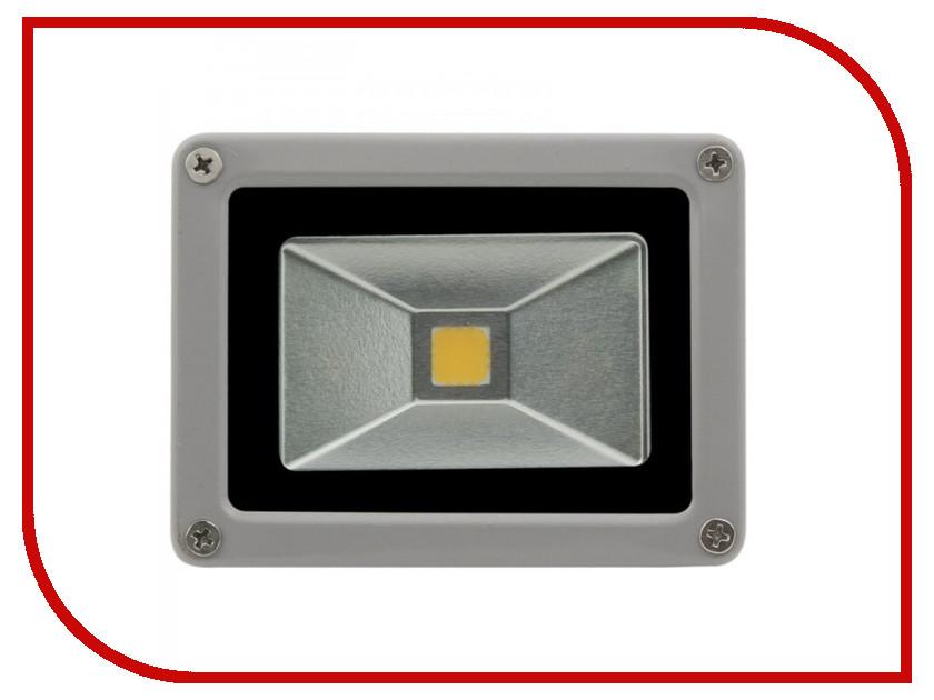 Лампа SWGroup FL-COB-10-CW 6500К<br>