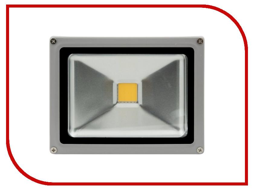 Лампа SWGroup FL-COB-20-CW 6500К<br>