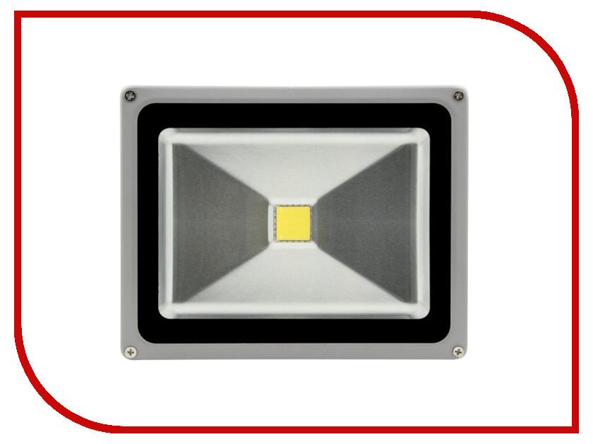 Лампа SWGroup FL-COB-30-CW 6500К