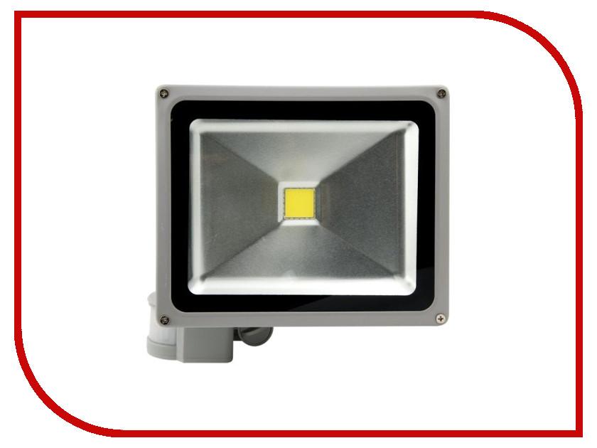Лампа SWGroup FL-COB-30-CW-S 6500K