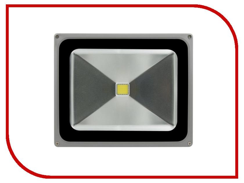 Лампа SWGroup FL-COB-50-CW 6500К<br>