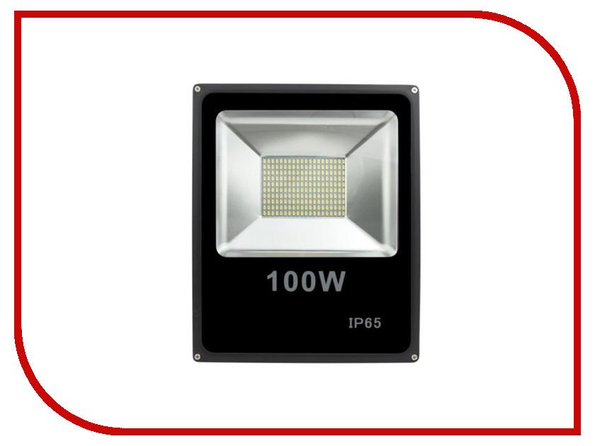 Лампа SWGroup FL-SMD-100-CW 6500К