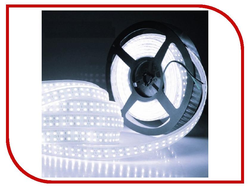 Светодиодная лента SWGroup SMD3528 19.2W 24V 240 LED/m 5m IP20 Cold White светодиодная лента swgroup эко smd2835 4 8w 12v 60 led m 5m ip20 ip30 warm white