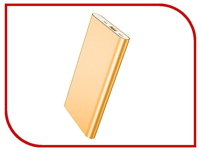 Аккумулятор Yoobao Power Bank 5000 mAh PL5 Gold<br>