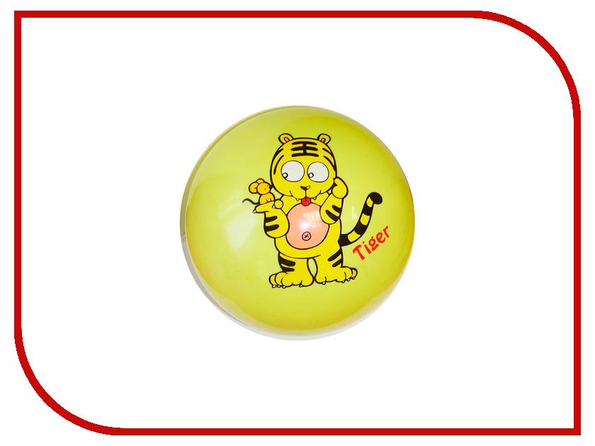 Мяч Z-Sports TB05