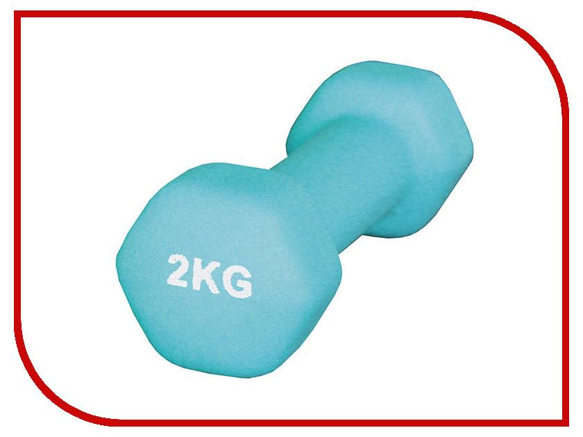 Гантель Atemi AD-01-2 2kg atemi asgk 01
