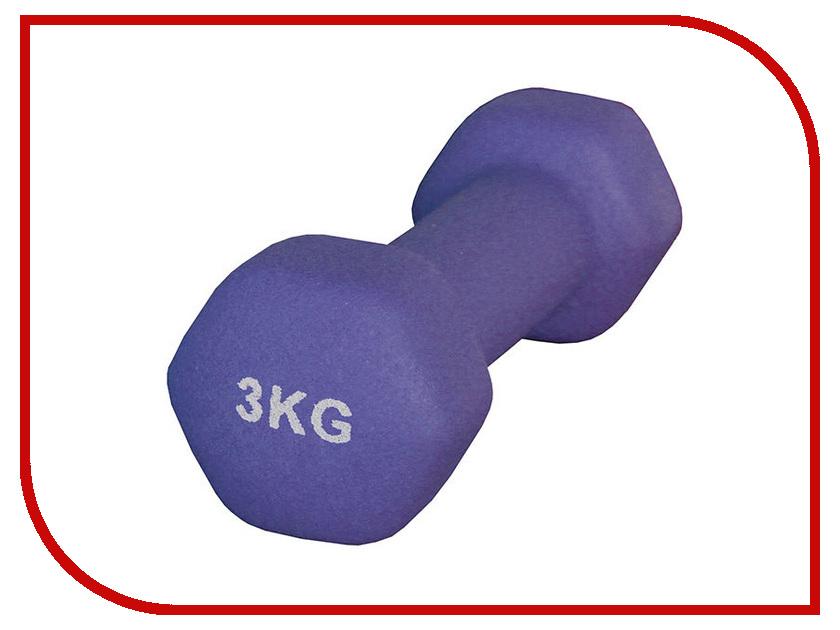 Гантель Atemi AD-01-3 3kg