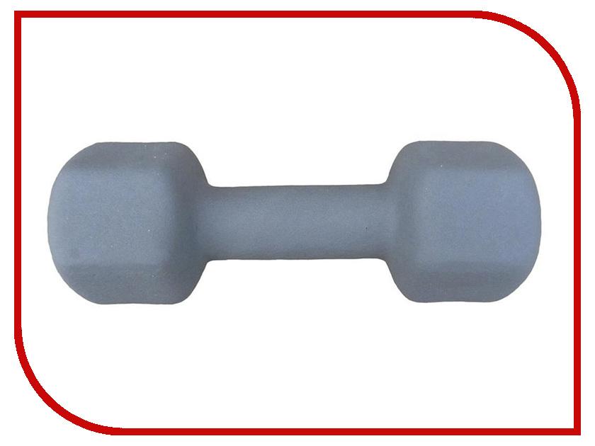 Гантель Atemi AD-01-4 4kg atemi asgk 01