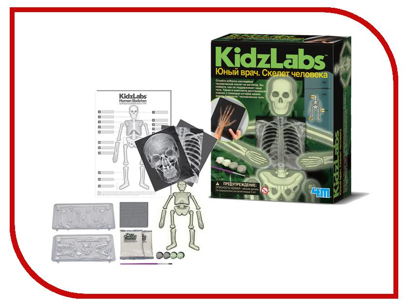 Игра 4М Юный врач Скелет человека 00-03375