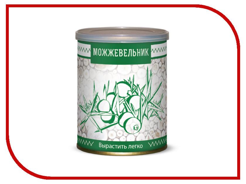 Растение BontiLand Можжевельник 411586 растение bontiland кедр 411142