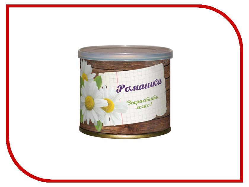 Растение BontiLand Ромашка 410794 погремушка ромашка