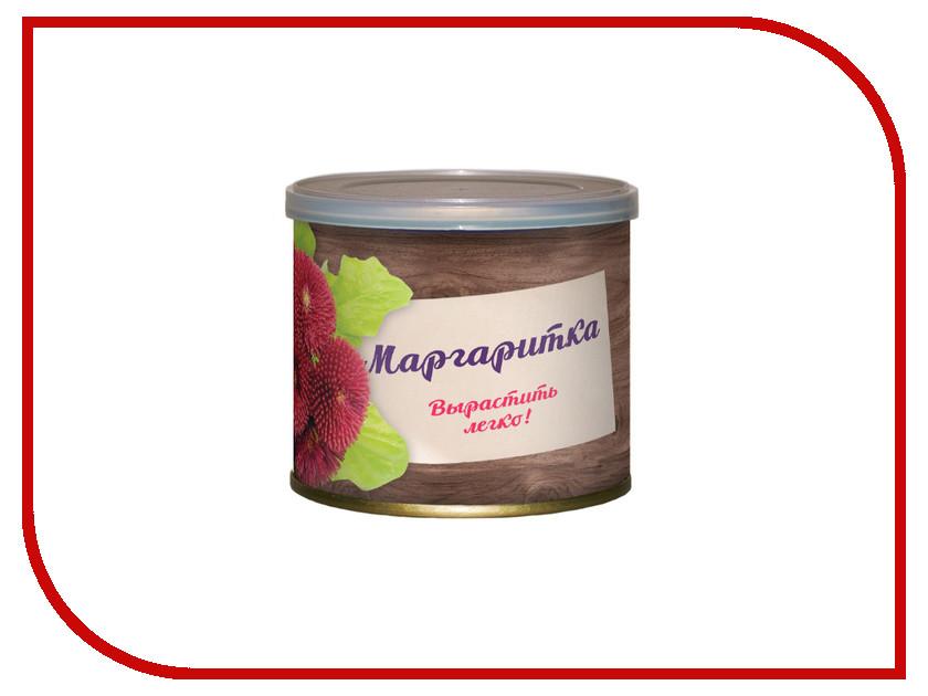 Растение BontiLand Маргаритка 410800 кейт харди дикая маргаритка