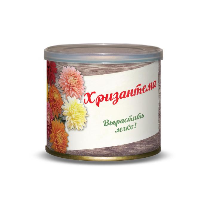 Растение BontiLand Хризантема 411104