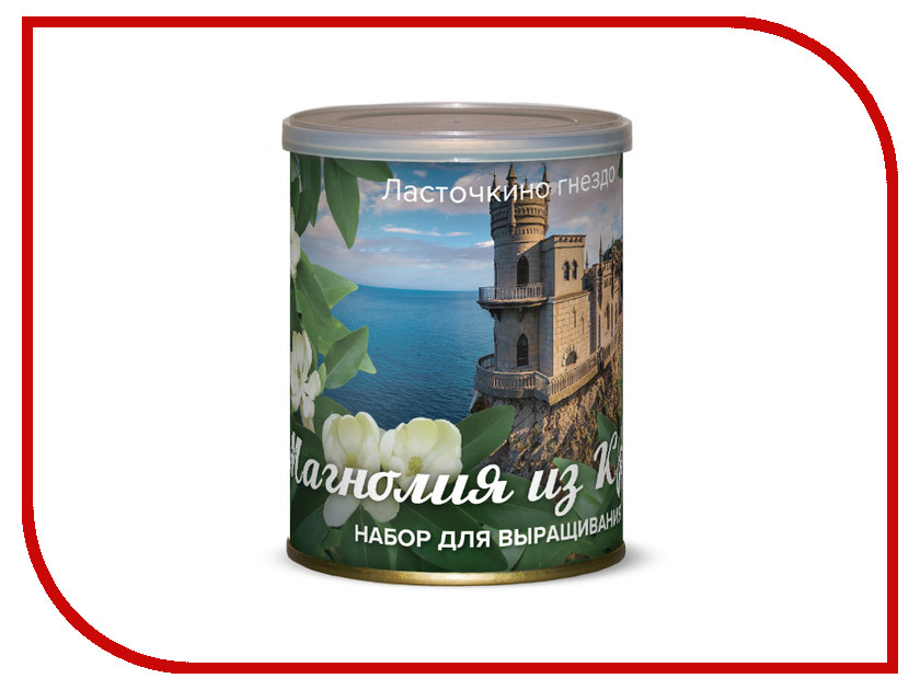 Растение BontiLand Ласточкино гнездо Магнолия из Крыма 415003 гнездо schwaiger 23087 8