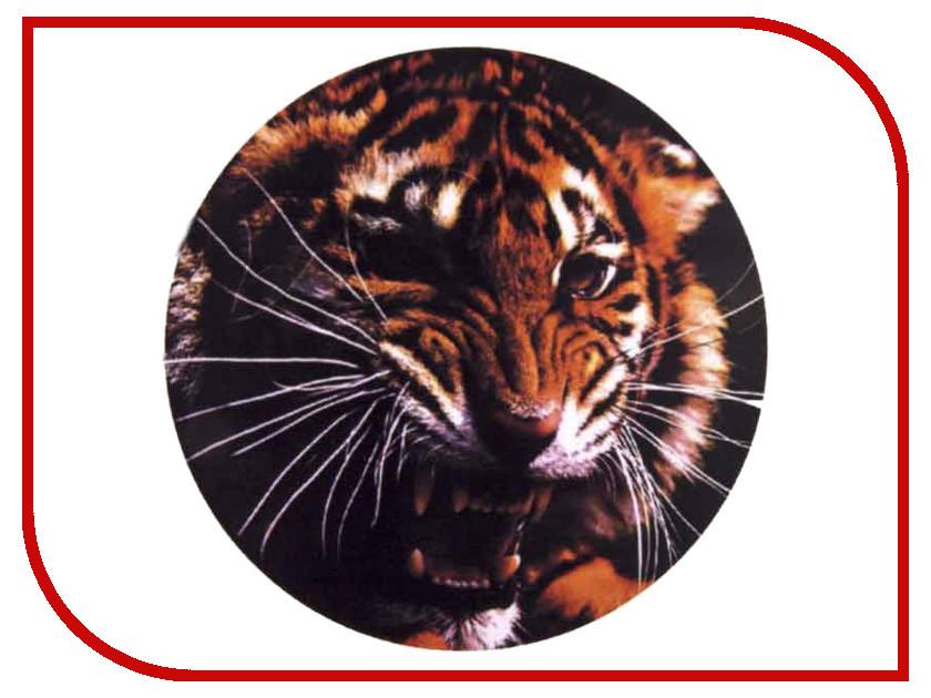 Аксессуар Skyway Тигр R15 S06301009 чехол skyway skyway s06301009 тигр