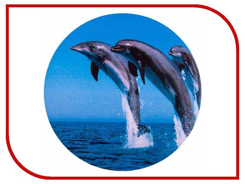 Аксессуар SKYWAY Дельфины R15 S06301011