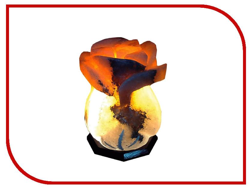 Солевая лампа СИМА-ЛЕНД Роза 4-5кг Микс 1733378